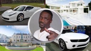 Akon's Wealth