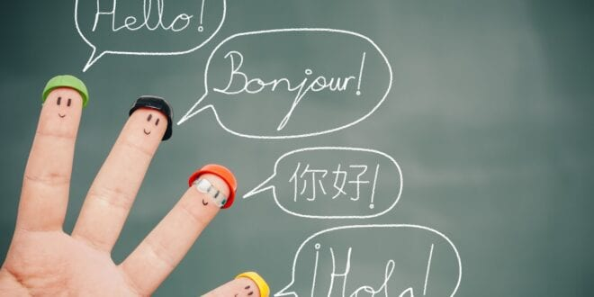 Reasons and Challenges of Learning New Languages